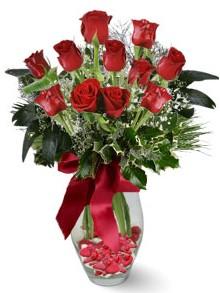 9 adet gül  Manisa yurtiçi ve yurtdışı çiçek siparişi  kirmizi gül
