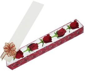 Manisa yurtiçi ve yurtdışı çiçek siparişi  kutu içerisinde 5 adet kirmizi gül