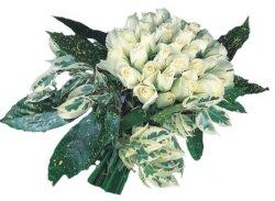 Manisa çiçek yolla , çiçek gönder , çiçekçi   9 Beyaz gül Özel kisiler için
