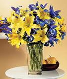 Manisa çiçek , çiçekçi , çiçekçilik  Lilyum ve mevsim  çiçegi özel