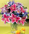 Manisa çiçek siparişi sitesi  Sevgi bahçesi Özel  bir tercih