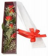 kutu içinde 5 adet kirmizi gül  Manisa çiçek yolla , çiçek gönder , çiçekçi