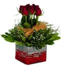 Manisa 14 şubat sevgililer günü çiçek  7 adet mika yada cam vazoda gül tanzimi