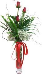 Manisa güvenli kaliteli hızlı çiçek  3 adet kirmizi gül vazo içerisinde