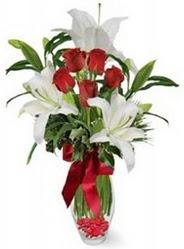 Manisa İnternetten çiçek siparişi  5 adet kirmizi gül ve 3 kandil kazablanka