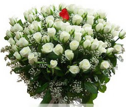 Manisa yurtiçi ve yurtdışı çiçek siparişi  100 adet beyaz 1 adet kirmizi gül buketi