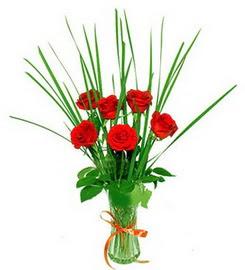 Manisa çiçek online çiçek siparişi  6 adet kırmızı güllerden vazo çiçeği