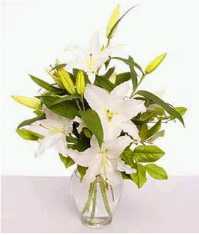 Manisa 14 şubat sevgililer günü çiçek  2 dal cazablanca vazo çiçeği