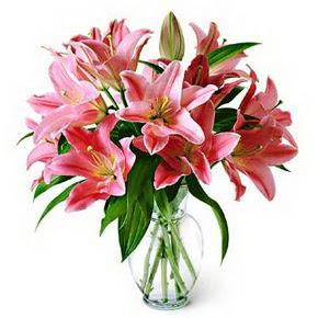 3 dal kazablanka görsel vazosu  Manisa çiçek yolla , çiçek gönder , çiçekçi