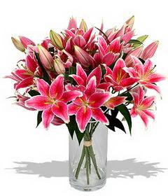 4 dal cazablanca görsel vazosu  Manisa kaliteli taze ve ucuz çiçekler