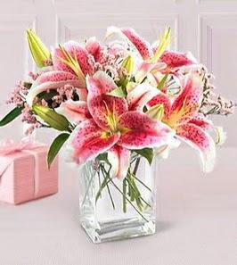 2 dal kazablanka görsel vazosu  Manisa güvenli kaliteli hızlı çiçek