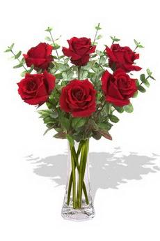 Manisa kaliteli taze ve ucuz çiçekler  6 kırmızı gül vazosu
