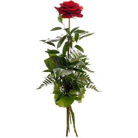 Manisa çiçek siparişi vermek  1 adet kırmızı gülden buket