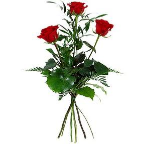 Manisa çiçekçi telefonları  3 adet kırmızı gülden buket