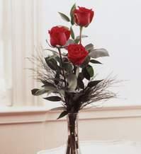 Manisa yurtiçi ve yurtdışı çiçek siparişi  Vazoda 3 adet güzel gül