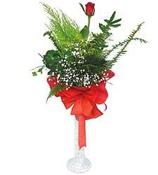 Manisa çiçek , çiçekçi , çiçekçilik  Cam vazoda masum tek gül