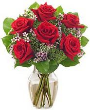 Kız arkadaşıma hediye 6 kırmızı gül  Manisa çiçek yolla , çiçek gönder , çiçekçi