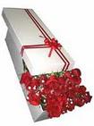 Manisa anneler günü çiçek yolla  11 adet 1.kalite magnum güller