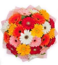 15 adet renkli gerbera buketi  Manisa internetten çiçek siparişi