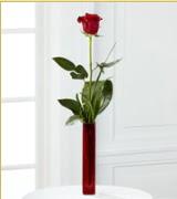 Vazo içerisinde 1 adet kırmızı gül  Manisa çiçek yolla , çiçek gönder , çiçekçi