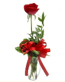 vazo içerisinde 1 adet kırmızı gül  Manisa anneler günü çiçek yolla