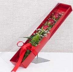Kutu içerisinde 3 adet kırmızı gül  Manisa çiçek gönderme sitemiz güvenlidir