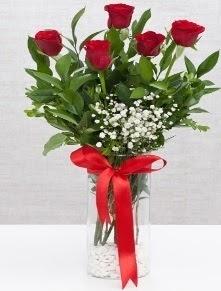 cam vazo içerisinde 5 adet kırmızı gül  Manisa çiçek gönderme