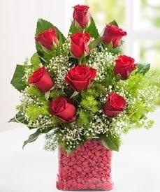 Cam içerisinde 9 adet kırmızı gül  Manisa yurtiçi ve yurtdışı çiçek siparişi