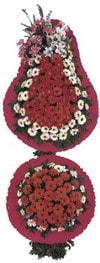 Manisa yurtiçi ve yurtdışı çiçek siparişi  Model Sepetlerden Seçme 2