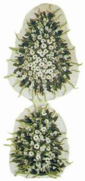 Manisa online çiçekçi , çiçek siparişi  Model Sepetlerden Seçme 3