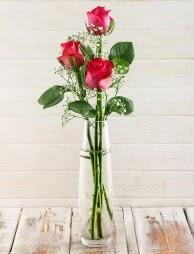Cam içerisinde 3 kırmızı gül  Manisa hediye sevgilime hediye çiçek