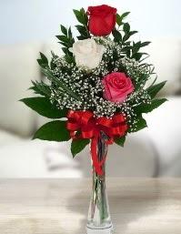 Camda 2 kırmızı 1 beyaz gül  Manisa çiçek servisi , çiçekçi adresleri