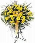 Manisa internetten çiçek siparişi  Sari kazablanka Ferforje