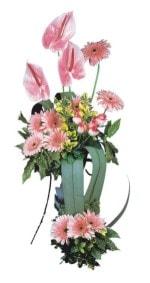 Manisa çiçekçiler  Pembe Antoryum Harikalar Rüyasi
