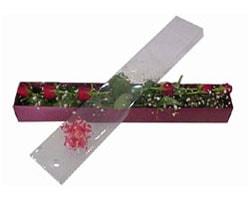 Manisa çiçek , çiçekçi , çiçekçilik   6 adet kirmizi gül kutu içinde