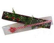 Manisa çiçek mağazası , çiçekçi adresleri  3 adet gül.kutu yaldizlidir.