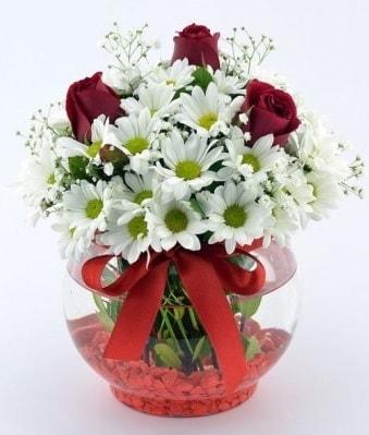 Fanusta 3 Gül ve Papatya  Manisa yurtiçi ve yurtdışı çiçek siparişi