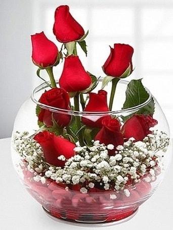Kırmızı Mutluluk fanusta 9 kırmızı gül  Manisa güvenli kaliteli hızlı çiçek
