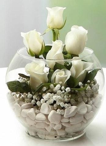 Beyaz Mutluluk 9 beyaz gül fanusta  Manisa güvenli kaliteli hızlı çiçek