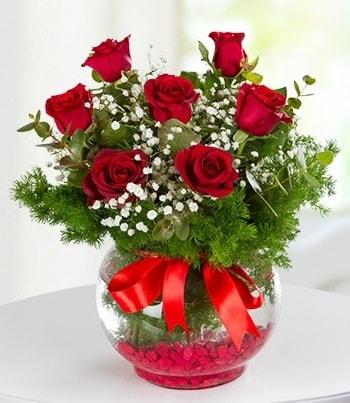 fanus Vazoda 7 Gül  Manisa çiçek online çiçek siparişi