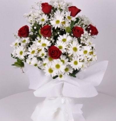7 adet kırmızı gül ve papatyalar krizantem  Manisa yurtiçi ve yurtdışı çiçek siparişi