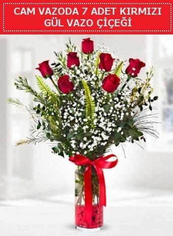 Cam vazoda 7 adet kırmızı gül çiçeği  Manisa cicekciler , cicek siparisi