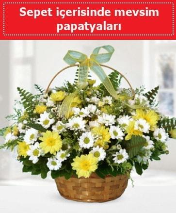 Sepet içerisinde mevsim papatyaları  Manisa çiçek servisi , çiçekçi adresleri
