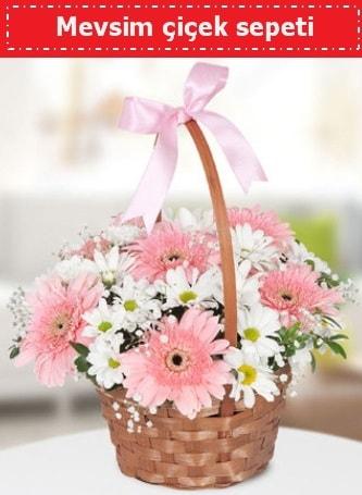 Mevsim kır çiçek sepeti  Manisa çiçek online çiçek siparişi