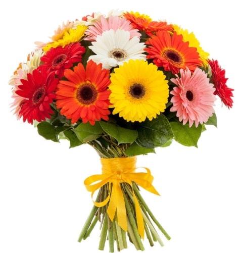 Gerbera demeti buketi  Manisa hediye sevgilime hediye çiçek