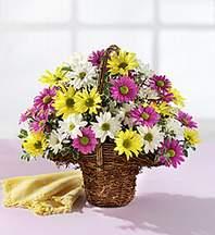 Manisa online çiçekçi , çiçek siparişi  Mevsim çiçekleri sepeti